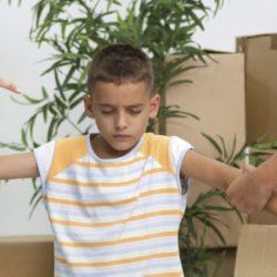 Пример рецензии на психологическую экспертизу (проживание ребенка)